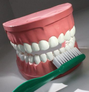 Picture of Teeth with Toothbrush